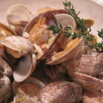 Clams Steamed in White Wine, Garlic and Herbs