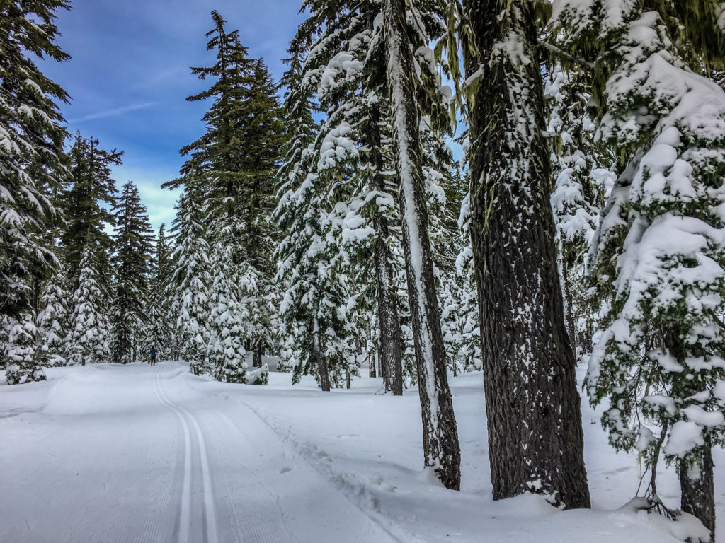 My Word for the Year. Winter in the Cascade Mountains in Oregon