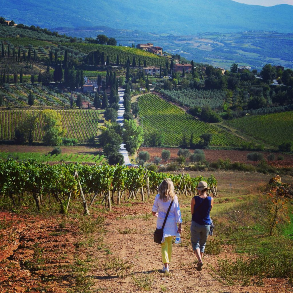 Walking through Tuscan vineyards for the Linguine with Cabbage, Wild Mushrooms and Shaved Truffle post.